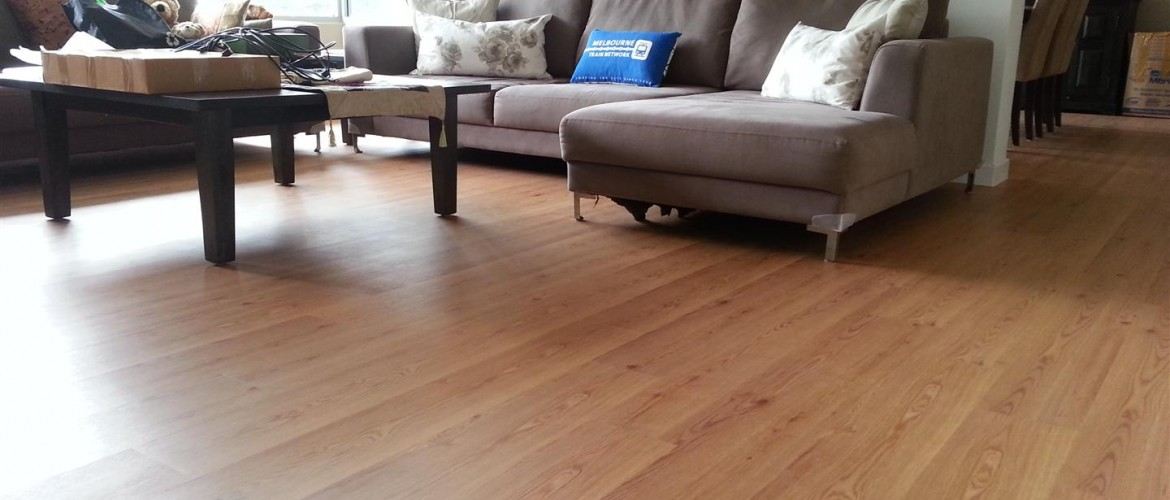 Living Room with Laminate Floor